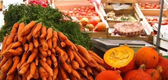 Alimentos orgânicos: oportunidades de mercado e desafios