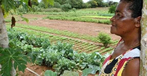 A mulher na agricultura orgânica e em novas ruralidades