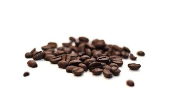 Conversão de café convencional para orgânico
