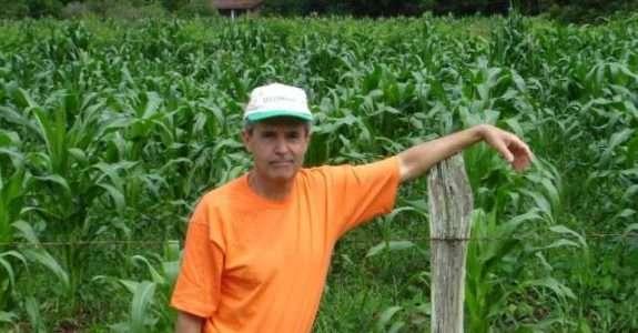 Orgânicos poderão ainda ser produzidos com sementes convencionais