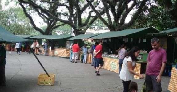 Alimentos Orgânicos em Curitiba: consumo e significado