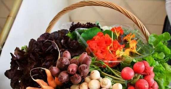 Mercado e produção de hortifrutícolas orgânicas