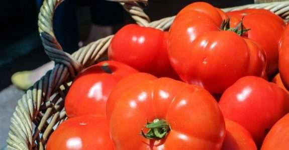 Os benefícios da agricultura orgânica