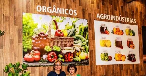 Orgânicos: investidores são jovens e querem interação produtor/consumidor