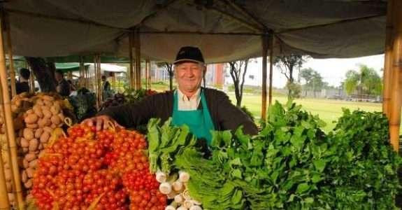 Número total de produtores orgânicos cresce 51% em um ano.
