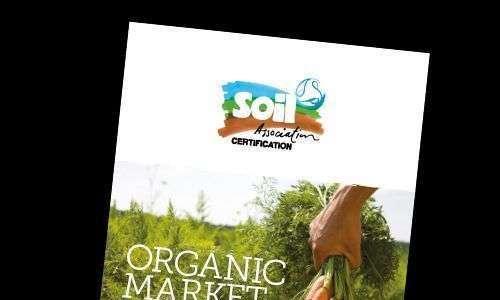 Reino Unido: Mercado orgânico mostra maior crescimento