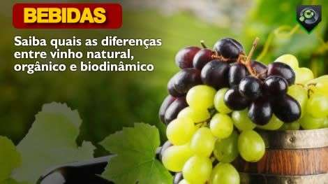 Saiba quais as diferenças entre vinho natural, orgânico e biodinâmico