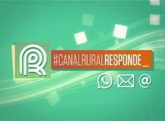 Canal Rural Responde estreia com produção de orgânicos.
