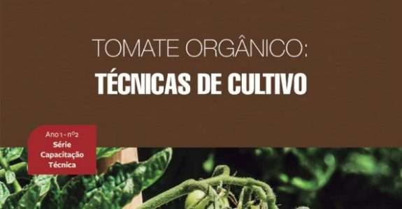 Tomate orgânico: Técnicas de cultivo