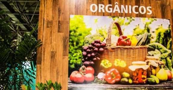 Produção orgânica na agricultura familiar de Santa Catarina