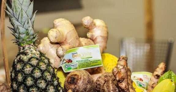 Agricultura Orgânica no Brasil cresce 30% ao ano e movimenta R$2,5 bilhões. Vejam as oportunidades