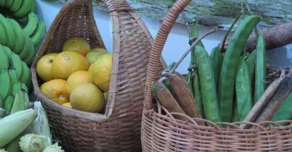 Ceasa de Curitiba abre espaço para os orgânicos