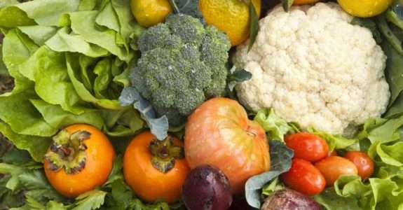 O setor brasileiro de alimentos orgânicos: perspectivas e restrições na inclusão de pequenos agricultores