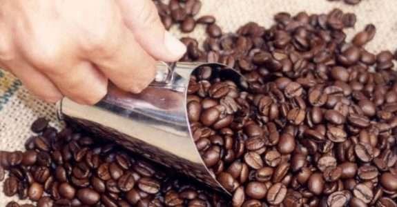 Embalagem de café orgânico e a intenção de compra do consumidor