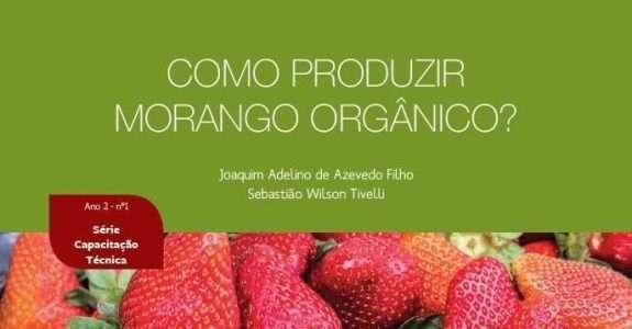 Manual de Produção de Morango Orgânico