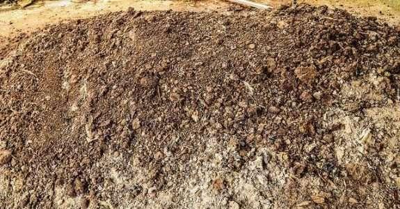 Produção de composto orgânico em pequenas propriedades
