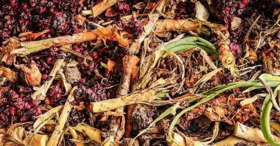 Compostagem de resíduos com esterco para insumo