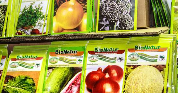 Sementes entraves na produção orgânica