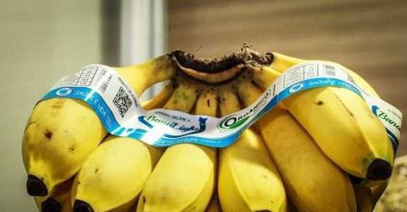 Gestão da qualidade de alimentos orgânicos: abordagens de Garvin