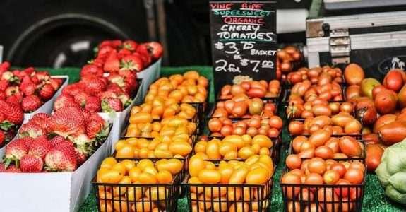 Embrapa: orientações para colheita, pós-colheita e comercialização de frutas e hortaliças orgânicas.