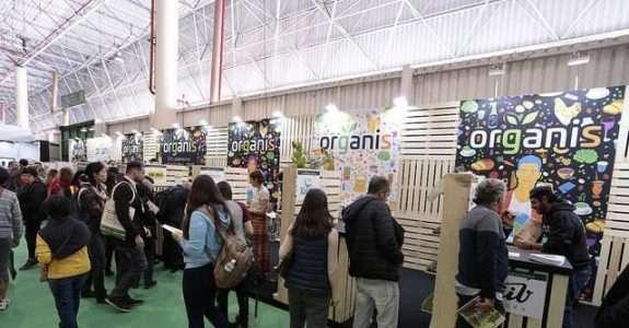 Feiras de orgânicos e produtos naturais mostram tendências do setor em São Paulo