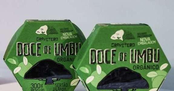 Sebrae Multiplica debate as tendências e os desafios para as exportações de alimentos orgânicos e sustentáveis