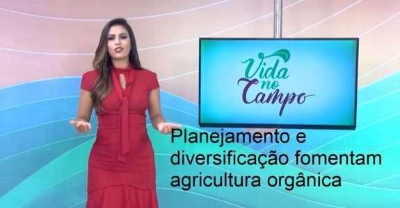 Planejamento e diversificação fomentam agricultura orgânica