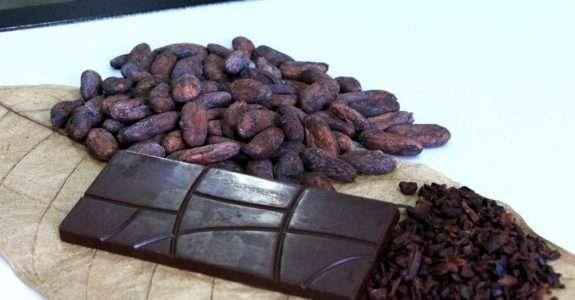 Barra de chocolate com insumos amazônicos chega ao mercado em abril