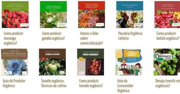 Manuais gratuitos e online ensinam a cultivar alimentos orgânicos