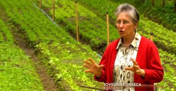 Sítio Cultivar é destaque em matéria do Globo Rural