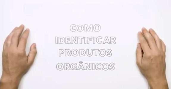 Consumidor: ferramenta fundamental no controle da qualidade dos produtos orgânicos