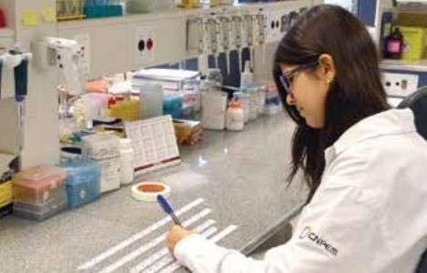 Biofertilizante: zero impacto no meio ambiente