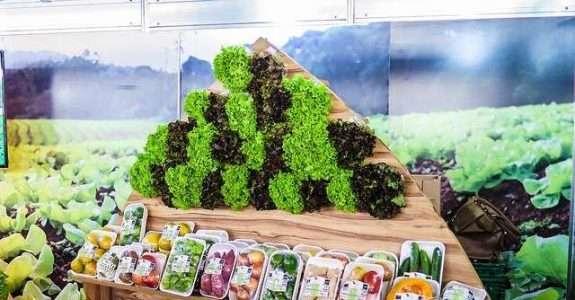 Mais de um terço dos consumidores compraram produtos orgânicos em 2019