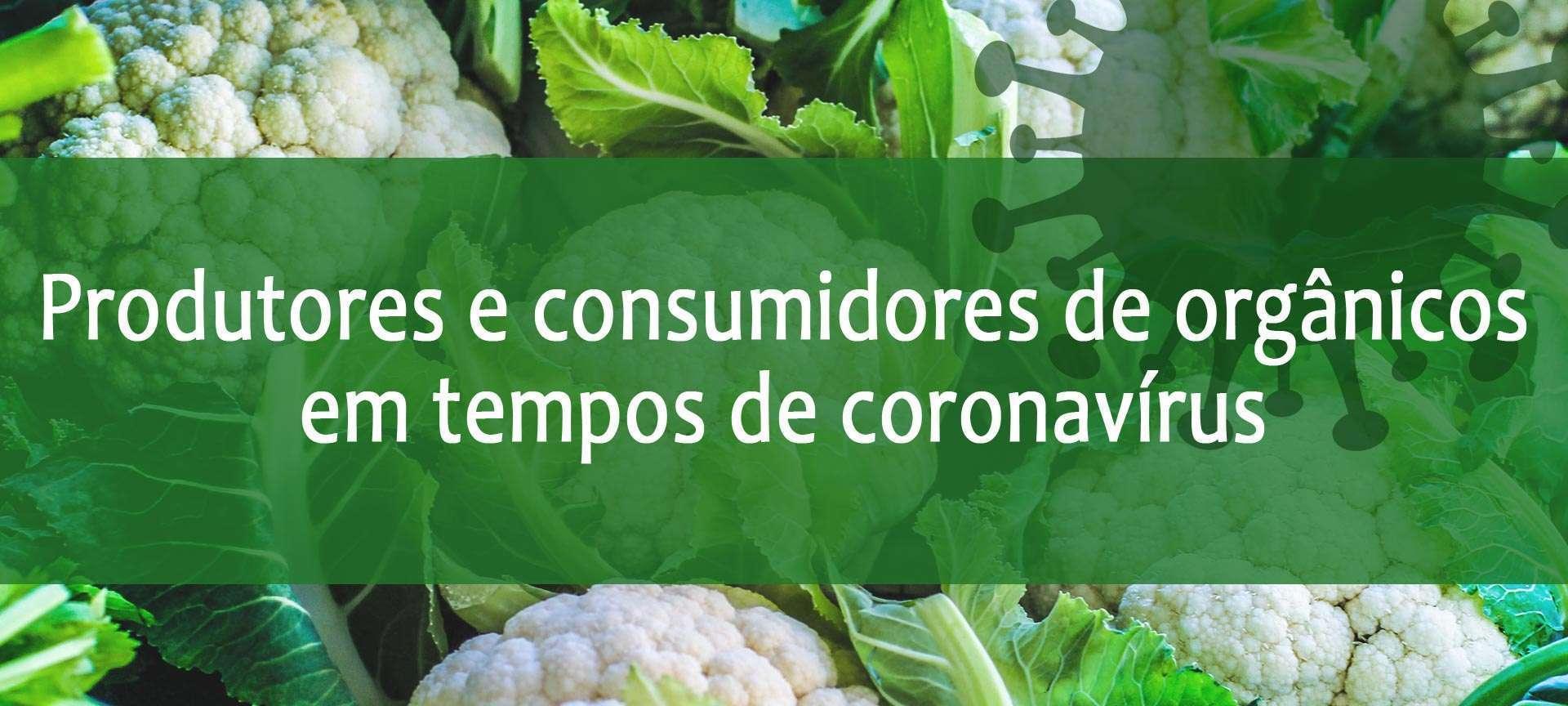 Coronavírus informações