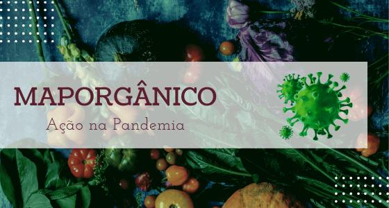 MapOrgânico facilita acesso de produtores aos consumidores de orgânicos durante a Covid-19
