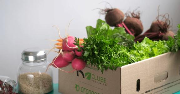 Inovação: empresas estão fazendo entrega de produtos orgânicos