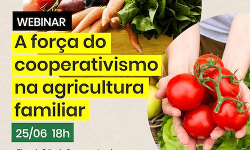 Conhecimento e união são desafios para as cooperativas da agricultura familiar